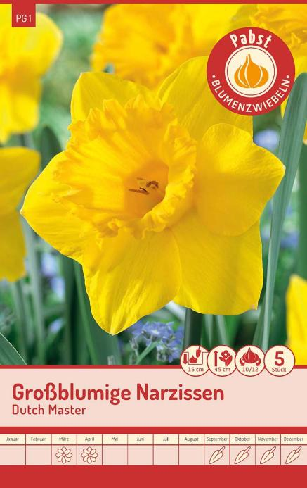 Carl Pabst-Herbstblumenzwiebeln